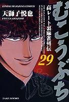 むこうぶち―高レート裏麻雀列伝 (29) (近代麻雀コミックス)