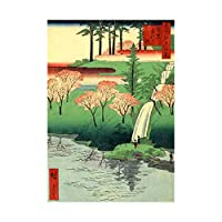 Painting Japanese Woodblock Waterfall River New Wall Art Print ペインティング日本人木材水川壁