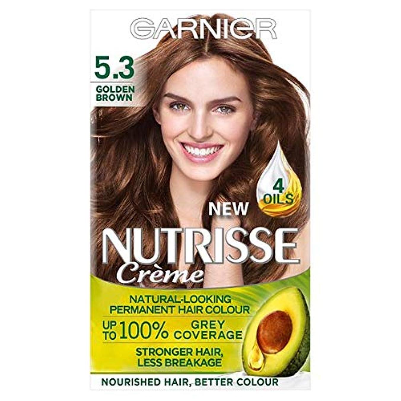 質素なブレーク称賛[Nutrisse] 5.3ゴールデンブラウン永久染毛剤Nutrisseガルニエ - Garnier Nutrisse 5.3 Golden Brown Permanent Hair Dye [並行輸入品]