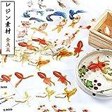 レジン 封入素材 フィルム シート 金魚イラスト 水草 夏 和風金魚鉢 (金魚篇)