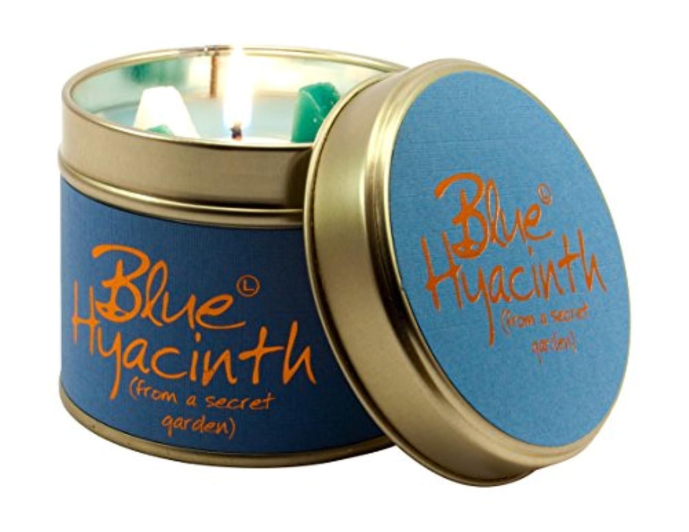 予想する体細胞用心深いBlue Hyacinth Scented Candle