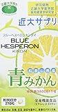 ブルーヘスペロン キンダイ 270粒x3個