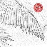 Angels & Devils [帯解説・ボーナストラック2曲収録 / 国内盤] (BRC420)