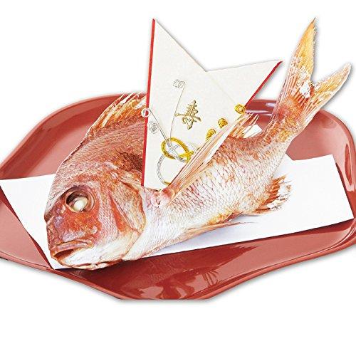 伊勢神宮外宮奉納 祝い鯛姿焼き (400g) 山形県産 鯛 尾頭付き 国産天然真鯛 お食い初め 飾り付き