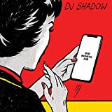 DJ Shadow<br />Our Pathetic Age