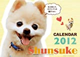 俊介 [2012年 カレンダー]