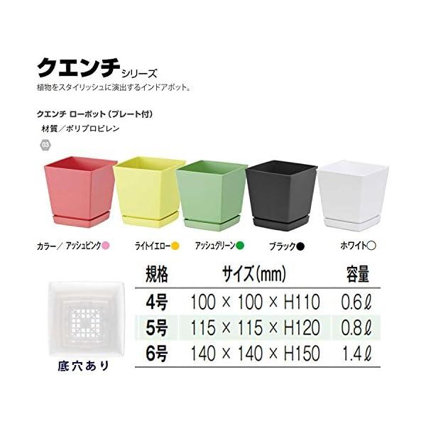 大和プラスチック 鉢・プランター クエンチロー...の紹介画像3