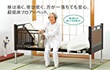 フランスベッド 超低床リクライニングベッド FLB03 J 脚タイプ(電動3モーター) Sサイズ 専門業者組立品フレーム