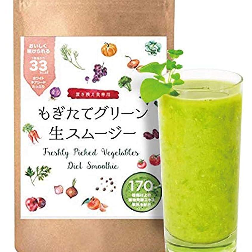 パプアニューギニア好意場合(紀州自然農園) 置き換え スムージー ダイエット 酵素 チアシード 食物繊維 乳酸菌 160g [32食] (グリーン)