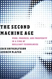 The Second Machine Age: Work, Progress, and Prosperity in a…
