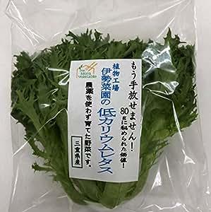 植物工場伊勢菜園 低カリウムレタス 80g×10袋セット
