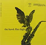 Hawk Flies High