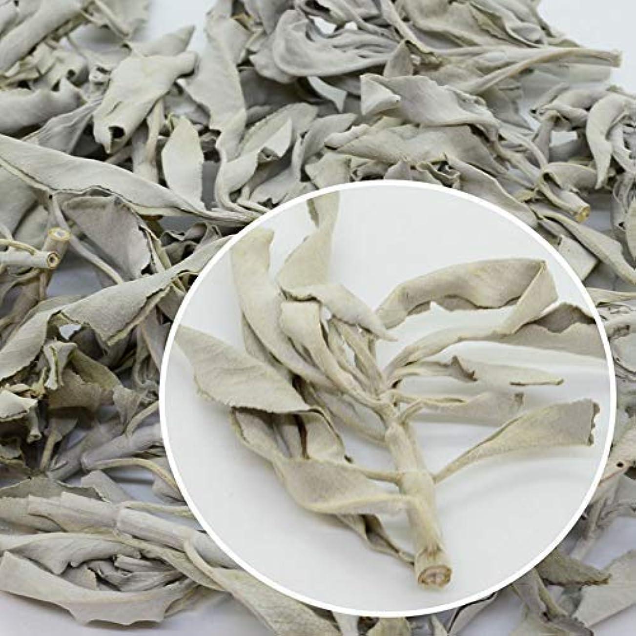 見せます短くする提唱する高品質 無農薬 ホワイトセージ クラスター (枝付き) 10gカリフォルニア産 浄化用 お香に