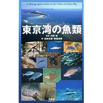 東京湾の魚類