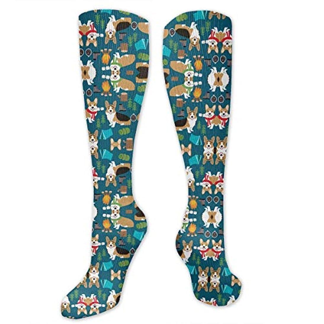 データム。使い込む靴下,ストッキング,野生のジョーカー,実際,秋の本質,冬必須,サマーウェア&RBXAA Camping with Aspen Campfire Dog Navy Socks Women's Winter Cotton Long...