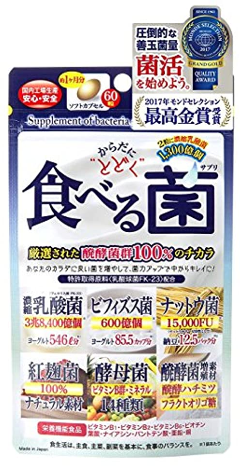 健康マグ今ジャパンギャルズ からだにとどく 食べる菌 460mg×60粒 ×5