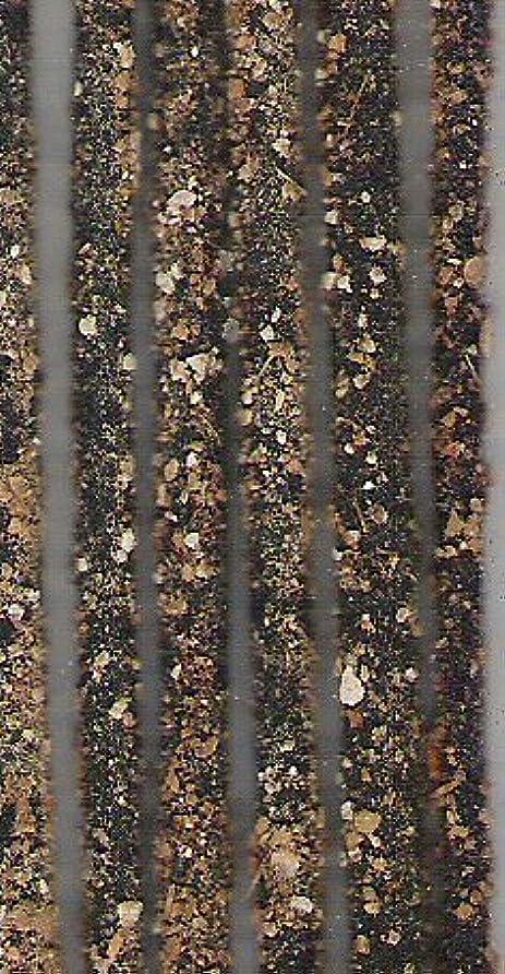 パーチナシティ豊富なNature Frankincense Patchouli Pure樹脂over Stick Incense 10 Sticks