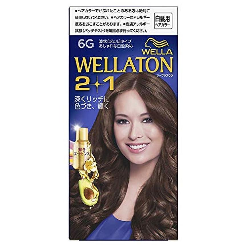 同種の努力する衝突するウエラトーン2+1 白髪染め 液状タイプ 6G [医薬部外品] ×6個