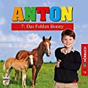 Das Fohlen Bonny (Anton 7)