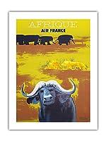 アフリカ - エールフランス - アフリカの野生動物 - ビンテージな航空会社のポスター によって作成された ポール・コリン c.1956 -プレミアム290gsmジークレーアートプリント - 46cm x 61cm