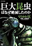 生命進化の謎 LIFE ON EARTH,A NEW PREHISTORY 巨大昆虫...[DVD]