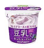 豆乳で作ったヨーグルト フルーツ味 ブルーベリー果肉入り【110g×12コ】クール便