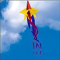 Spinning Star Windsock