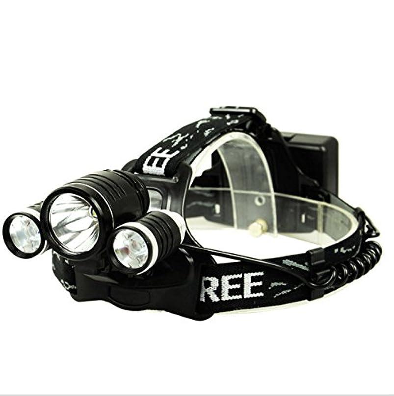 グラス大使館コークスSWEAT LED ヘッドライト 輝度800LM センサー機能 防水仕様 充電式 角度調整可 登山 夜間作業 アウトドアに適用 点灯3モード