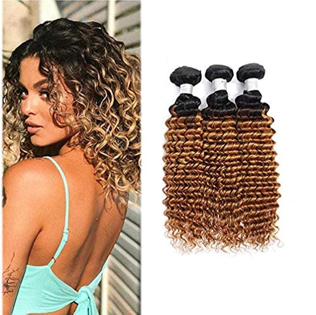糸あまりにもこんにちは女性の髪織りブラジルの巻き毛の束オンブル巻き毛の束人間の髪の毛の束深い巻き毛(3束)