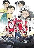 OVA『ハイキュー!! 陸 VS 空』[DVD]