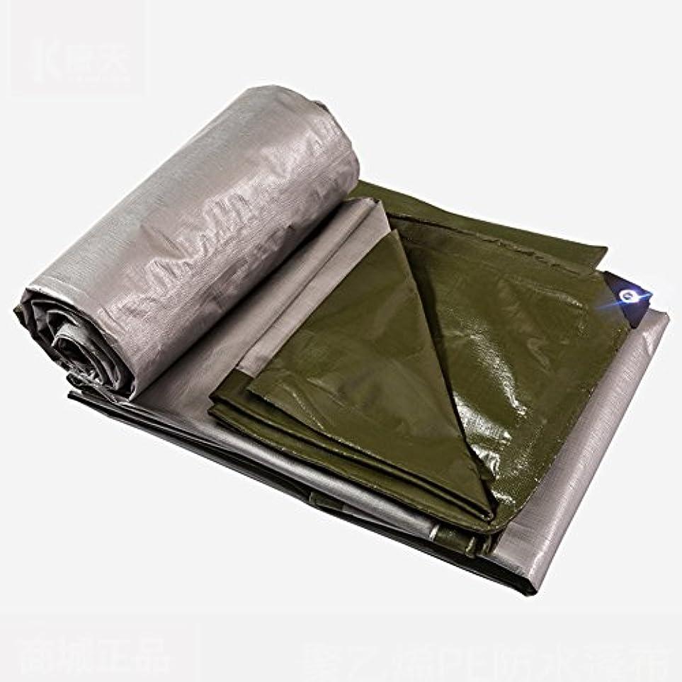 宣言フェロー諸島スマッシュLIXIONG オーニング日焼け止め ポリエチレン 老化防止 防腐剤 耐久性のある 折りたたみが簡単で、 厚さ0.38MM、 180 G/m 2、 19次元 (サイズ さいず : 5 x 10m)