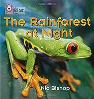 The Rainforest at Night (Collins Big Cat Phonics)