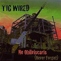 Ne Obliviscaris by Tig Wired
