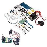 Prament DIYオーディオプラズマスピーカーキットハイパワーClassic TL494プラズマスピーカー COD