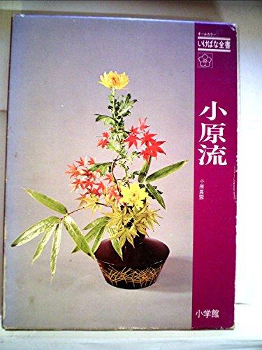 小原流 (1975年) (オールカラーいけばな全書)