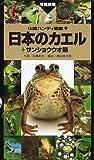 日本のカエル+サンショウウオ類 (山渓ハンディ図鑑) 画像