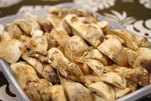 乾燥松茸(四つ割)業務用(松茸100%)FDフリーズドライ