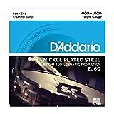 【1セット】D'Addario/ダダリオ EJ60[10-20] ループエンド 5弦 バンジョー弦 ステンレススチール