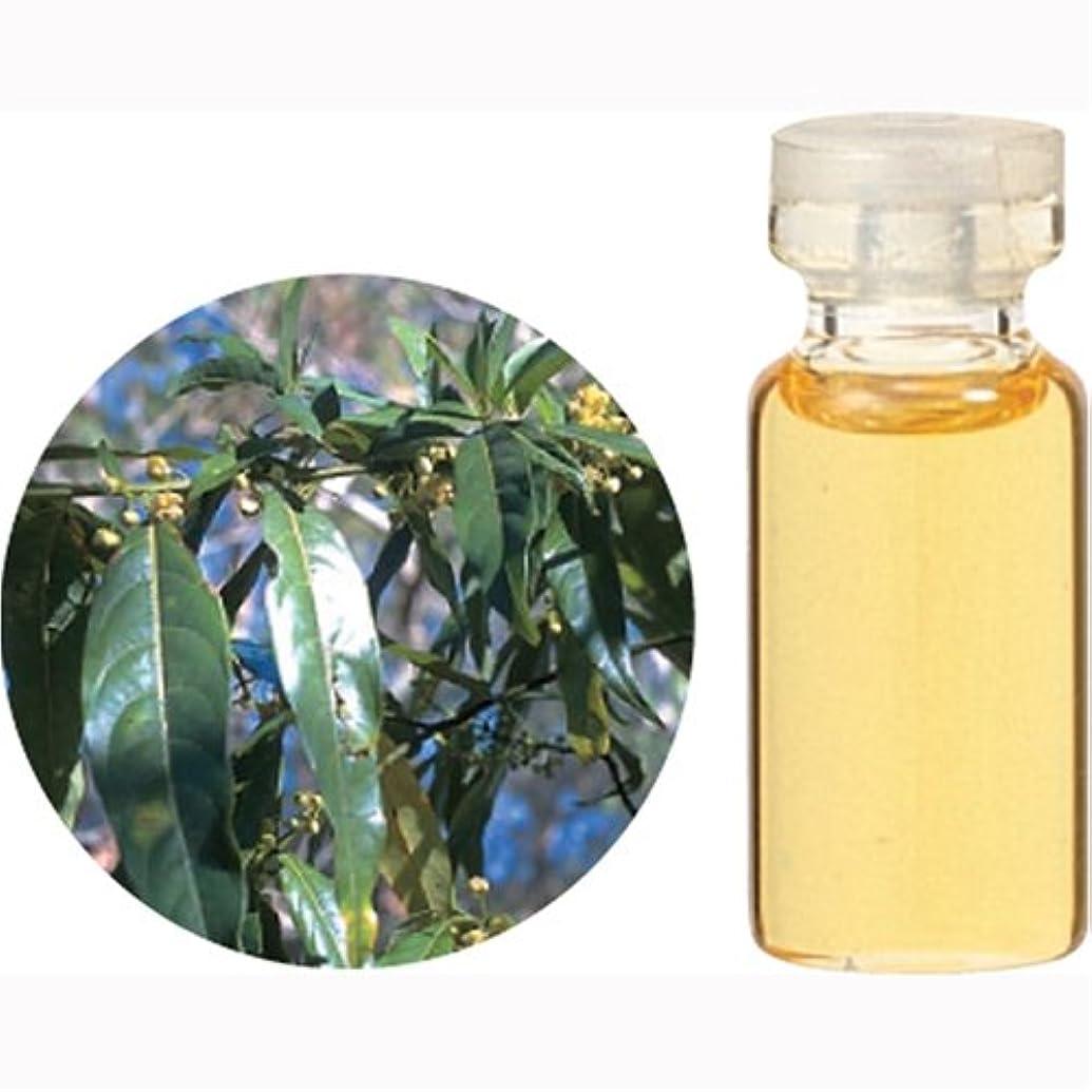 疑い療法太陽生活の木 Cリツエアクベバ エッセンシャルオイル 10ml
