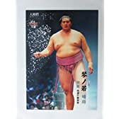 BBM2015大相撲カード「レジェンド」至宝■レギュラーカード■38関脇/琴ノ若