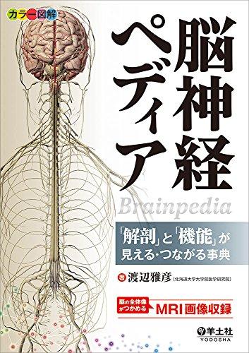 カラー図解 脳神経ペディア〜「解剖」と「機能」が見える・つながる事典
