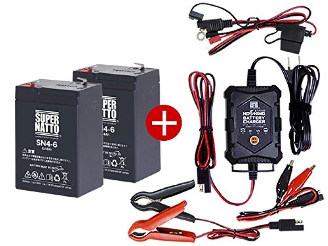 不正直延ばす微視的充電器 + SN4-6 バッテリー2個 お得な3点セット 純正品完全互換 安心の動作確認済製品 PE6V4.5 NP4-6 LC-R064R2P 子供用電動乗用おもちゃ対応