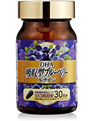 ユニマットリケン DHA吸収型ブルーベリールティン 45g(500mg×90粒)