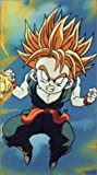 Dragon Ball Z: Babidi [VHS] [Import]