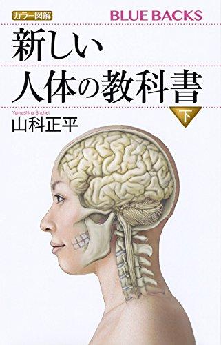 カラー図解 新しい人体の教科書 下 (ブルーバックス)