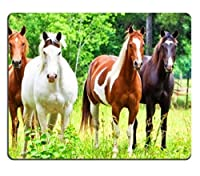 american quarter horses Prairie animals Mouse Pads Customized Made to Order Support Ready 9 7/8 Inch (250mm) X 7 7/8 Inch (200mm) X 1/16 Inch (2mm) High Quality Eco Friendly Cloth with Neoprene Rubber Liil Mouse Pad Desktop Mousepad Laptop Mousepads Comfortable Computer Mouse Mat Cute Gaming Mouse pad