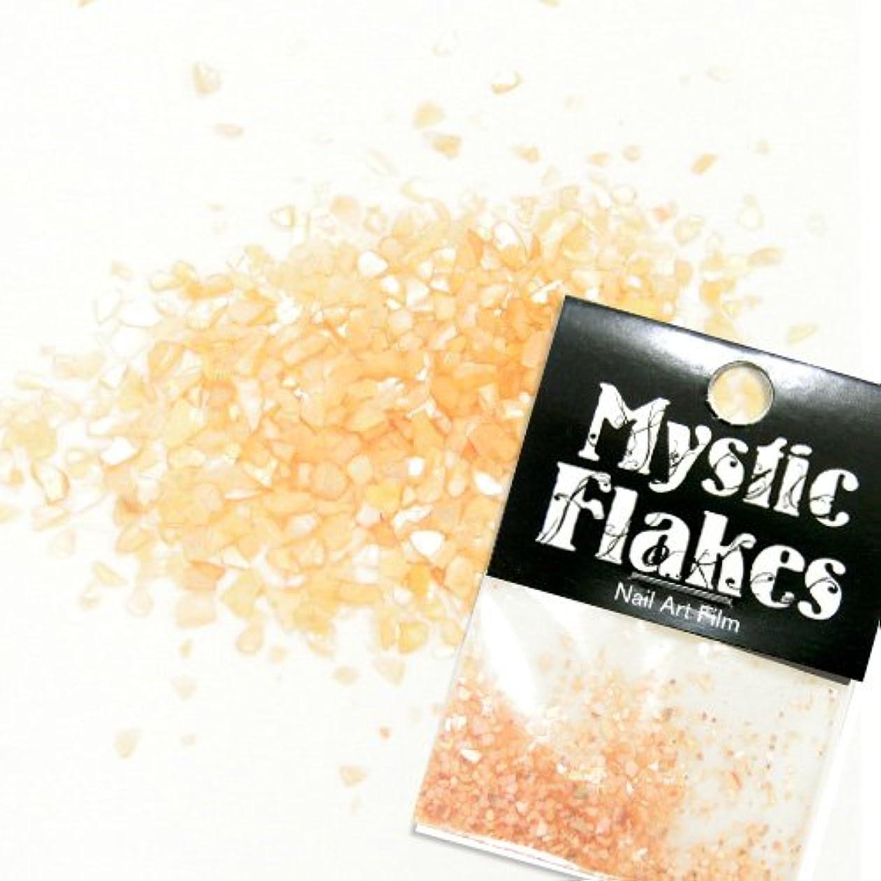 先のことを考えるブリーフケース失望ミスティックフレース ネイル用ストーン シェル オレンジ 0.5g