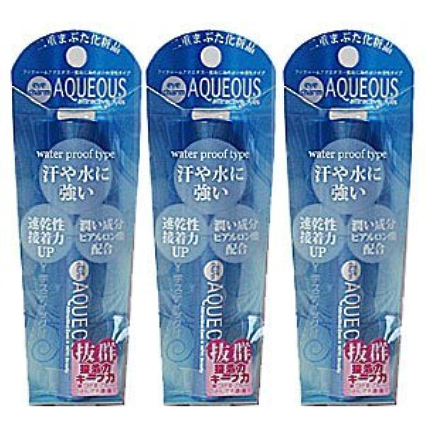 決定タックルボーカルLYON アイチャーム AQUEOUS NYe-120 (二重まぶた化粧品) 3個セット