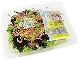 [冷蔵] カルシウムを補うサラダ