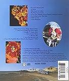 The Adventures Of Priscilla, Queen Of The Desert: Original Motion Picture Soundtrack 画像